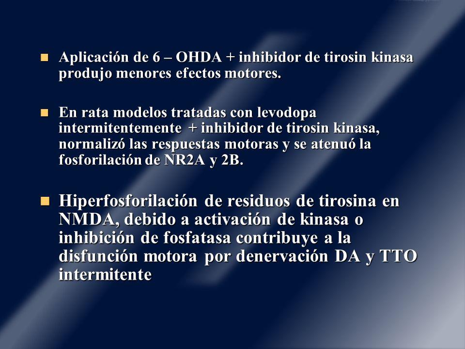 Aplicación de 6 – OHDA + inhibidor de tirosin kinasa produjo menores efectos motores. Aplicación de 6 – OHDA + inhibidor de tirosin kinasa produjo men