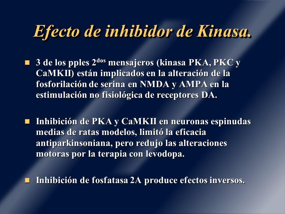 Efecto de inhibidor de Kinasa. 3 de los pples 2 dos mensajeros (kinasa PKA, PKC y CaMKII) están implicados en la alteración de la fosforilación de ser