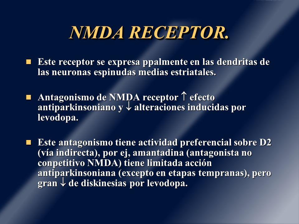 NMDA RECEPTOR. Este receptor se expresa ppalmente en las dendritas de las neuronas espinudas medias estriatales. Este receptor se expresa ppalmente en