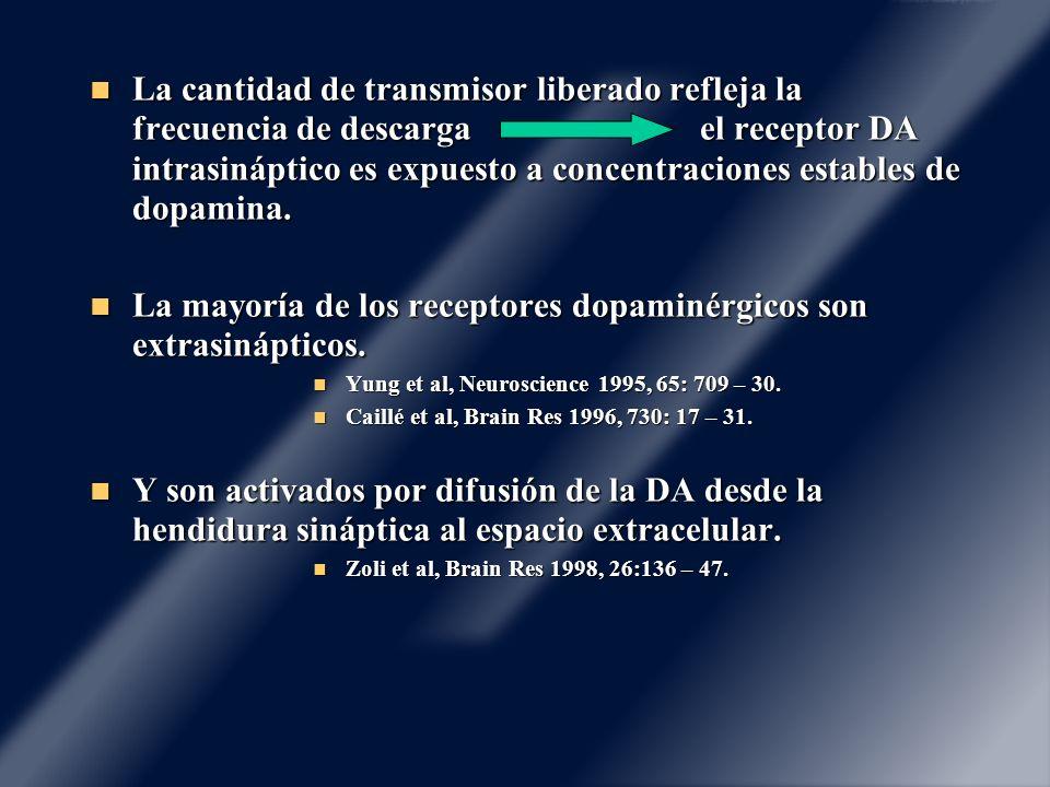 La cantidad de transmisor liberado refleja la frecuencia de descarga el receptor DA intrasináptico es expuesto a concentraciones estables de dopamina.