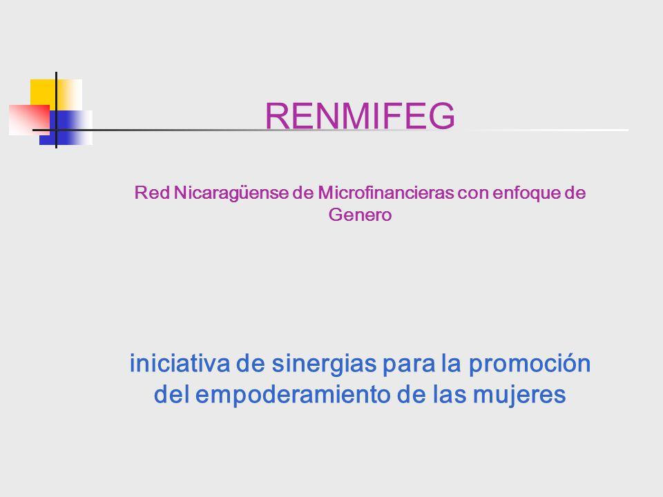 RENMIFEG Red Nicaragüense de Microfinancieras con enfoque de Genero iniciativa de sinergias para la promoción del empoderamiento de las mujeres
