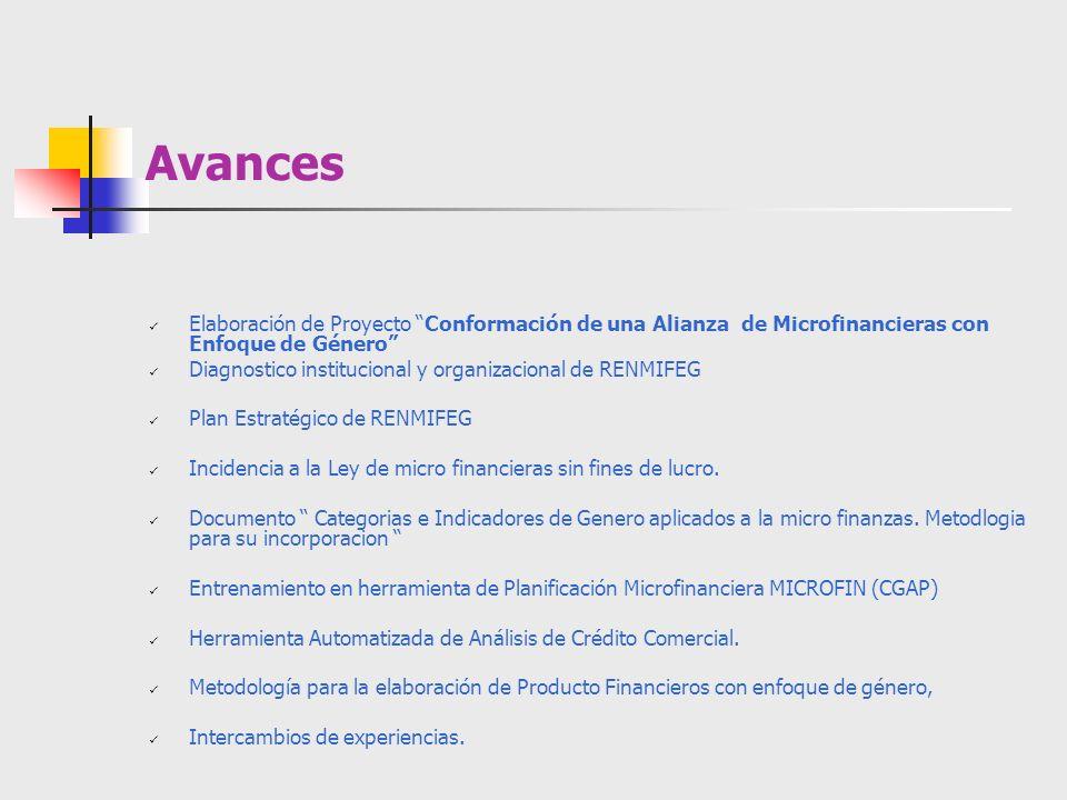 Avances Elaboración de Proyecto Conformación de una Alianza de Microfinancieras con Enfoque de Género Diagnostico institucional y organizacional de RE