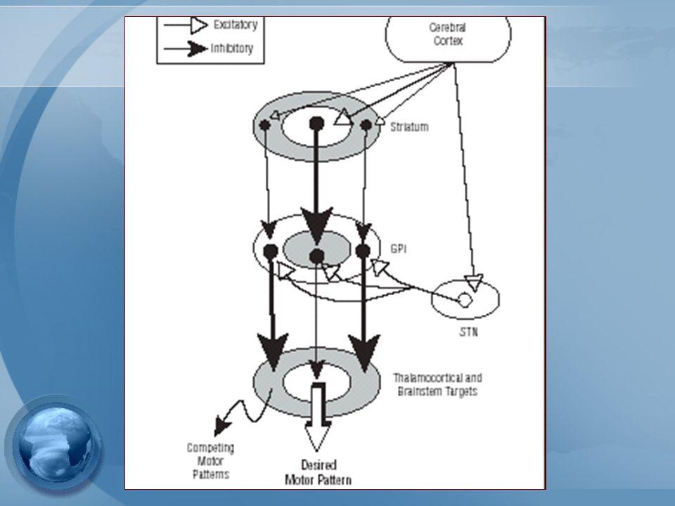 1- ARCH NEUROL/vol 60, oct 2003 The Basal ganglia and Involuntary Miovements Corea primario: idiopático, genético Corea secundario: infecciosas, inmunes, otra.