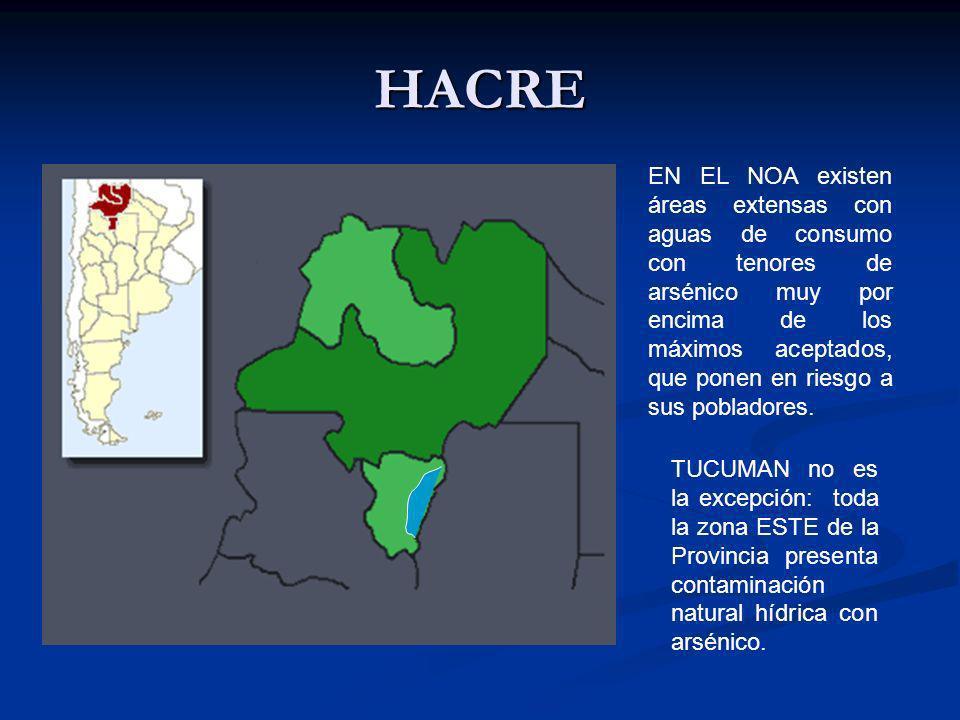 HACRE EN EL NOA existen áreas extensas con aguas de consumo con tenores de arsénico muy por encima de los máximos aceptados, que ponen en riesgo a sus