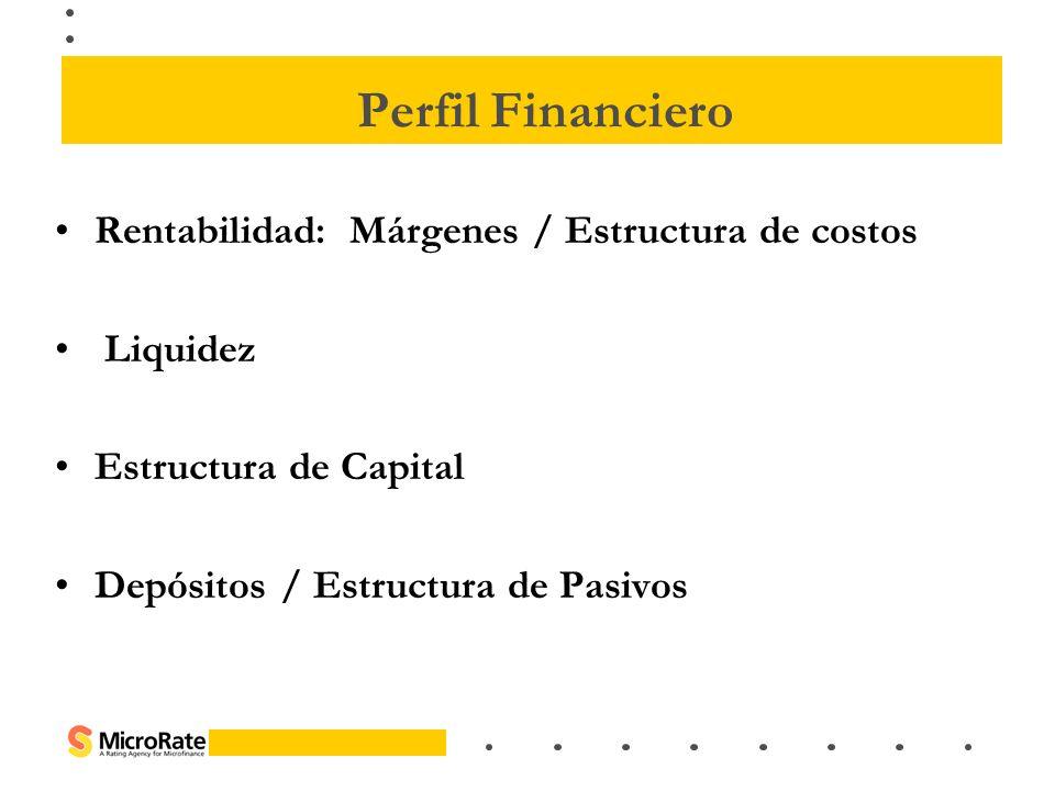 Rentabilidad: Márgenes / Estructura de costos Liquidez Estructura de Capital Depósitos / Estructura de Pasivos Perfil Financiero