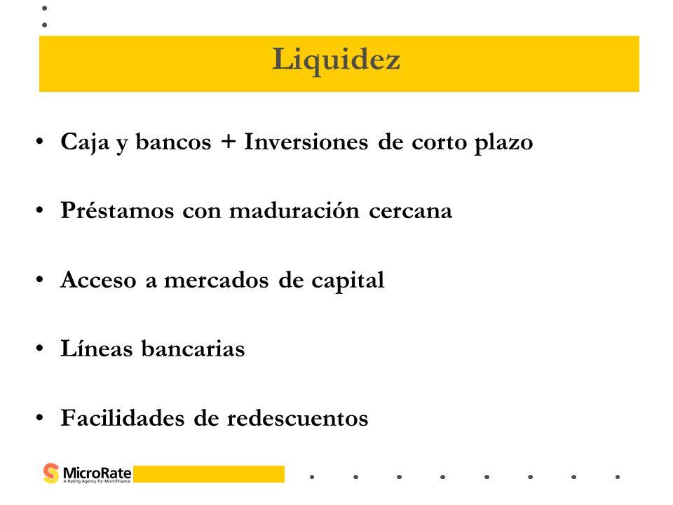 Caja y bancos + Inversiones de corto plazo Préstamos con maduración cercana Acceso a mercados de capital Líneas bancarias Facilidades de redescuentos