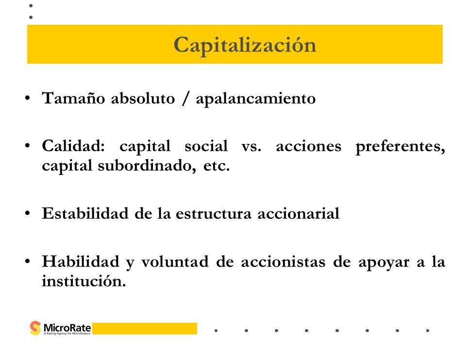 Tamaño absoluto / apalancamiento Calidad: capital social vs. acciones preferentes, capital subordinado, etc. Estabilidad de la estructura accionarial