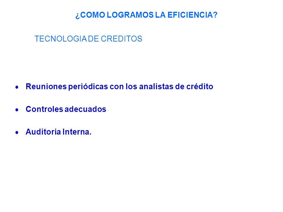 Reuniones periódicas con los analistas de crédito Controles adecuados Auditoria Interna.