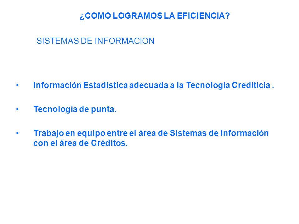 Información Estadística adecuada a la Tecnología Crediticia.