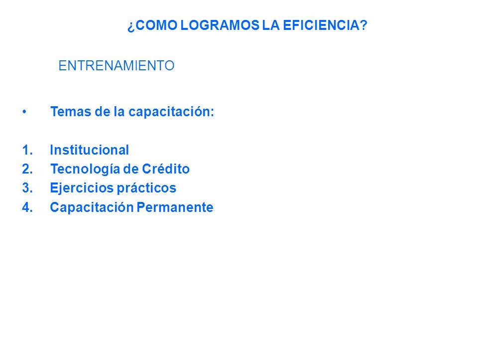 Temas de la capacitación: 1.Institucional 2.Tecnología de Crédito 3.Ejercicios prácticos 4.Capacitación Permanente - Análisis y Administración de solicitudes - Garantías - Seguimiento al crédito - Cobro ¿COMO LOGRAMOS LA EFICIENCIA.