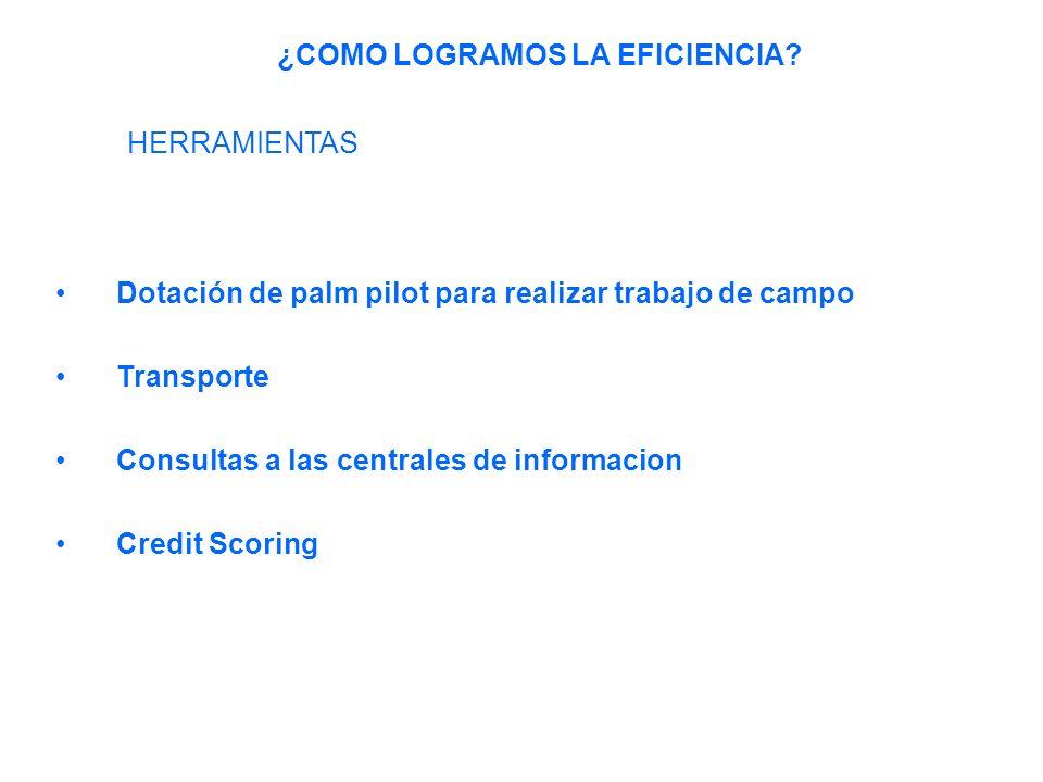 Dotación de palm pilot para realizar trabajo de campo Transporte Consultas a las centrales de informacion Credit Scoring ¿COMO LOGRAMOS LA EFICIENCIA.