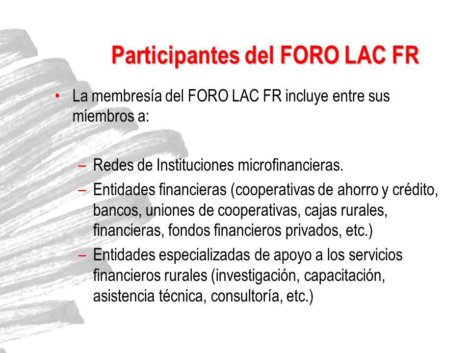 Participantes del FORO LAC FR La membresía del FORO LAC FR incluye entre sus miembros a: –Redes de Instituciones microfinancieras. –Entidades financie