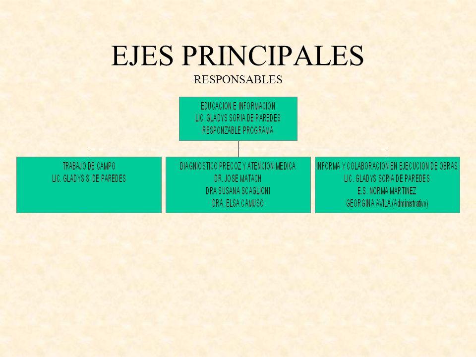EJES PRINCIPALES RESPONSABLES