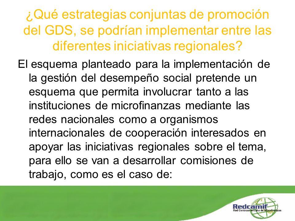 ¿Qué estrategias conjuntas de promoción del GDS, se podrían implementar entre las diferentes iniciativas regionales? El esquema planteado para la impl