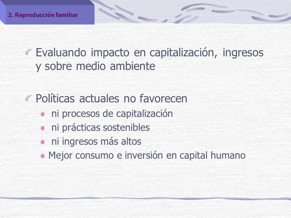 Evaluando impacto en capitalización, ingresos y sobre medio ambiente Políticas actuales no favorecen ni procesos de capitalización ni prácticas sostenibles ni ingresos más altos Mejor consumo e inversión en capital humano 2.