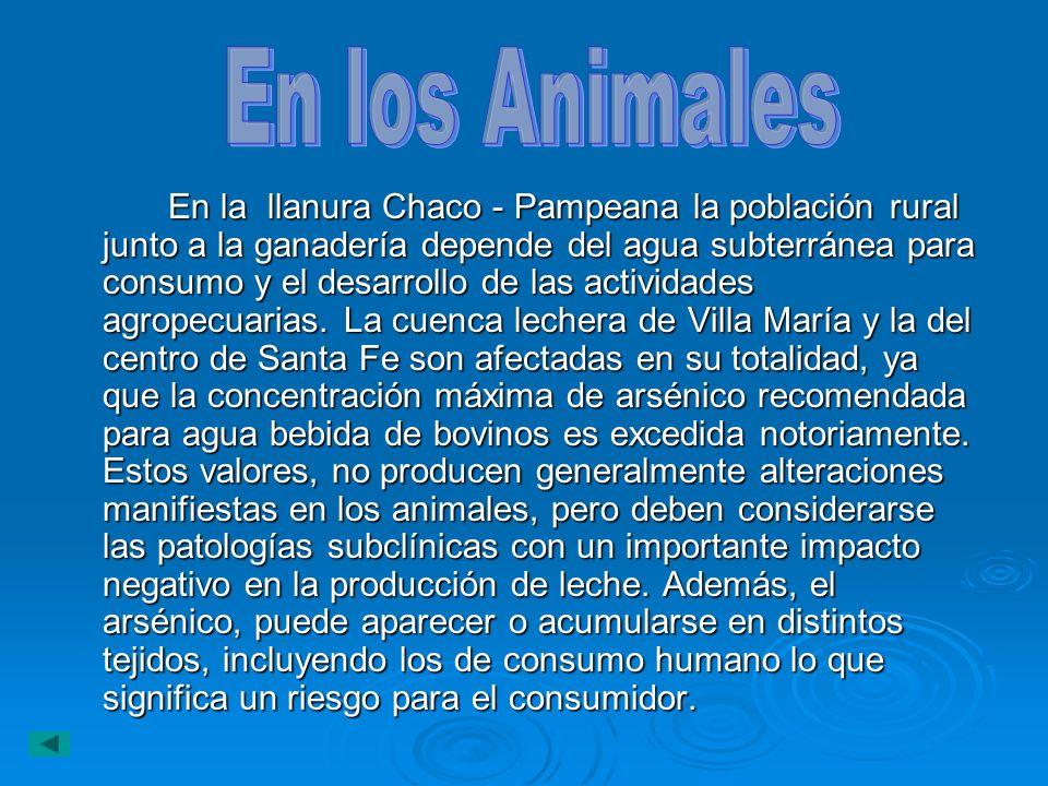 En la llanura Chaco - Pampeana la población rural junto a la ganadería depende del agua subterránea para consumo y el desarrollo de las actividades ag