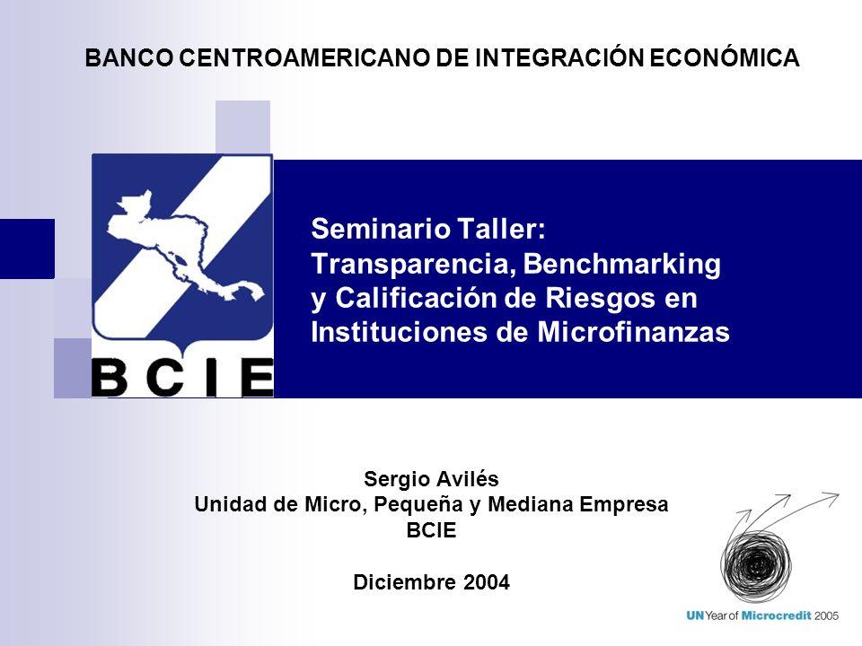 Seminario Taller: Transparencia, Benchmarking y Calificación de Riesgos en Instituciones de Microfinanzas Sergio Avilés Unidad de Micro, Pequeña y Med