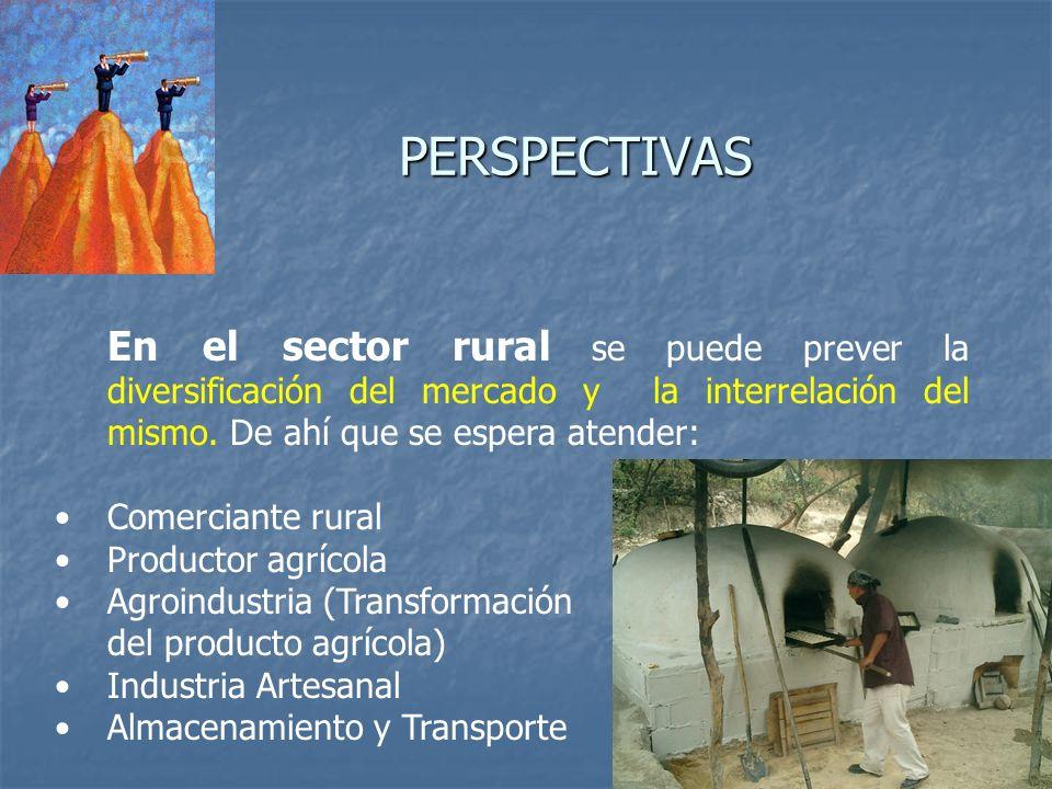 PERSPECTIVAS En el sector rural se puede prever la diversificación del mercado y la interrelación del mismo. De ahí que se espera atender: Comerciante