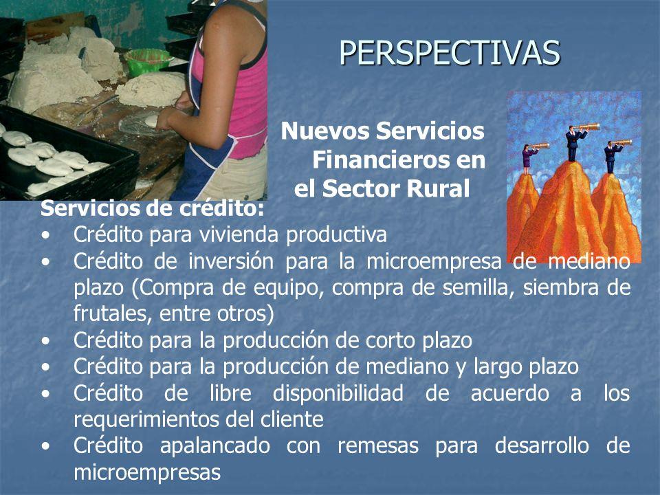 PERSPECTIVAS Nuevos Servicios Financieros en el Sector Rural Servicios de crédito: Crédito para vivienda productiva Crédito de inversión para la micro