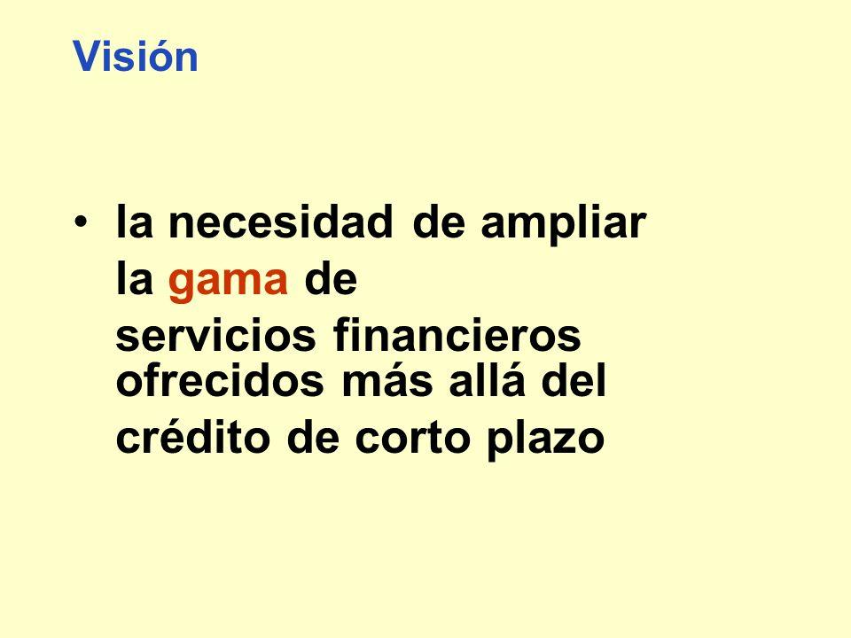 Visión la necesidad de ampliar la gama de servicios financieros ofrecidos más allá del crédito de corto plazo