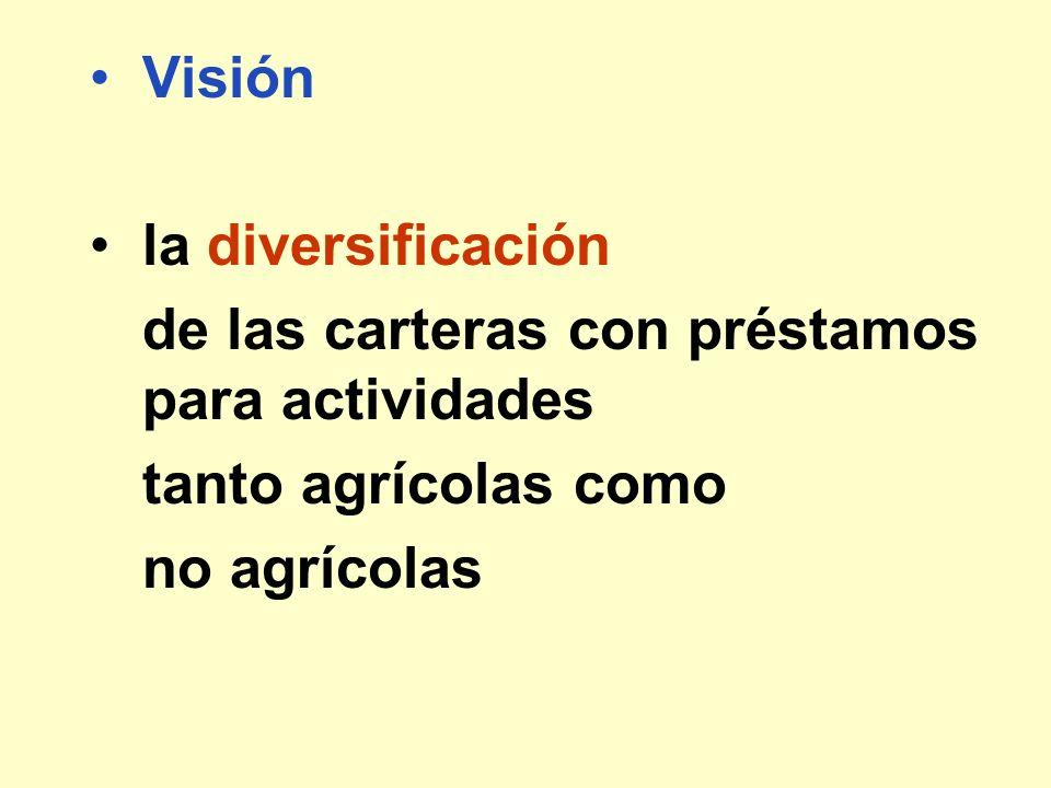 Visión la diversificación de las carteras con préstamos para actividades tanto agrícolas como no agrícolas