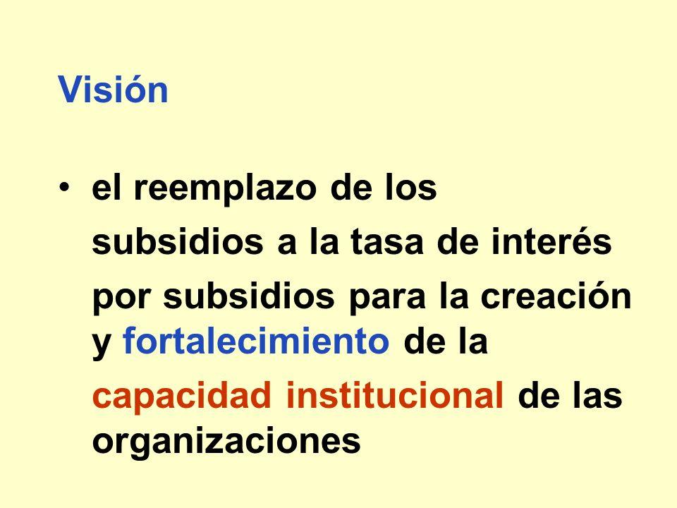 Visión el reemplazo de los subsidios a la tasa de interés por subsidios para la creación y fortalecimiento de la capacidad institucional de las organi