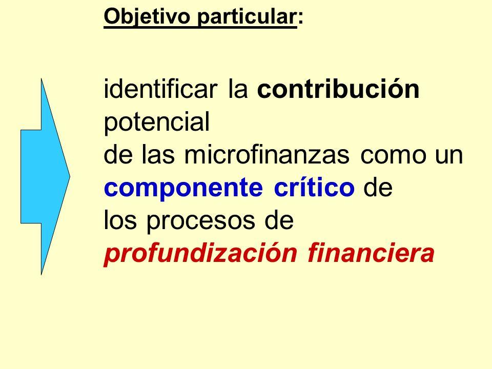Objetivo particular: identificar la contribución potencial de las microfinanzas como un componente crítico de los procesos de profundización financier