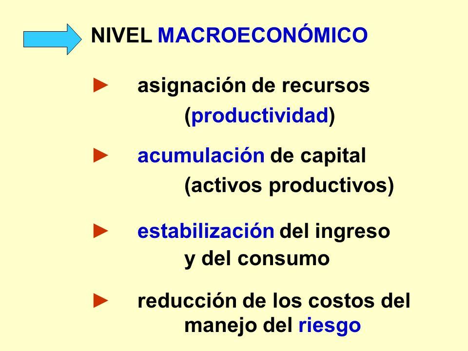NIVEL MACROECONÓMICO asignación de recursos (productividad) acumulación de capital (activos productivos) estabilización del ingreso y del consumo redu