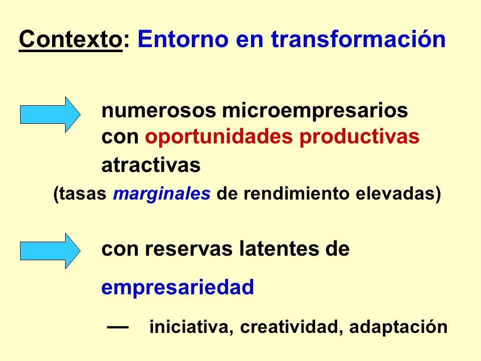Contexto: Entorno en transformación numerosos microempresarios con oportunidades productivas atractivas (tasas marginales de rendimiento elevadas) con