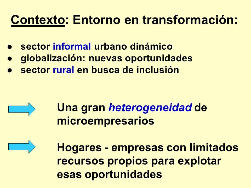 Contexto: Entorno en transformación: sector informal urbano dinámico globalización: nuevas oportunidades sector rural en busca de inclusión Una gran h