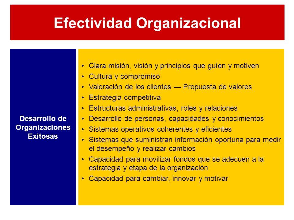 Desarrollo de Organizaciones Exitosas Clara misión, visión y principios que guíen y motiven Cultura y compromiso Valoración de los clientes Propuesta de valores Estrategia competitiva Estructuras administrativas, roles y relaciones Desarrollo de personas, capacidades y conocimientos Sistemas operativos coherentes y eficientes Sistemas que suministran información oportuna para medir el desempeño y realizar cambios Capacidad para movilizar fondos que se adecuen a la estrategia y etapa de la organización Capacidad para cambiar, innovar y motivar Efectividad Organizacional