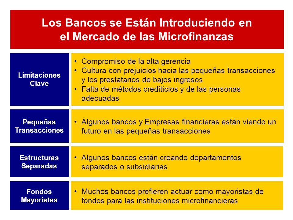 Los Bancos se Están Introduciendo en el Mercado de las Microfinanzas Compromiso de la alta gerencia Cultura con prejuicios hacia las pequeñas transacciones y los prestatarios de bajos ingresos Falta de métodos crediticios y de las personas adecuadas Limitaciones Clave Algunos bancos y Empresas financieras están viendo un futuro en las pequeñas transacciones Pequeñas Transacciones Algunos bancos están creando departamentos separados o subsidiarias Estructuras Separadas Muchos bancos prefieren actuar como mayoristas de fondos para las instituciones microfinancieras Fondos Mayoristas