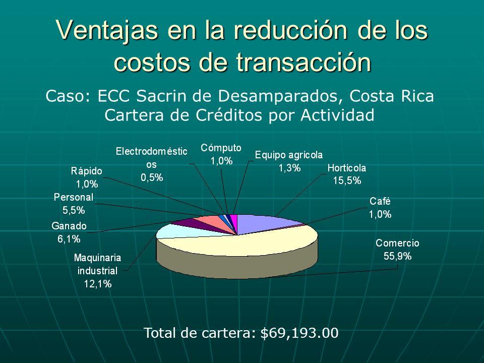 Ventajas en la reducción de los costos de transacción Caso: ECC Sacrin de Desamparados, Costa Rica Cartera de Créditos por Actividad Total de cartera: