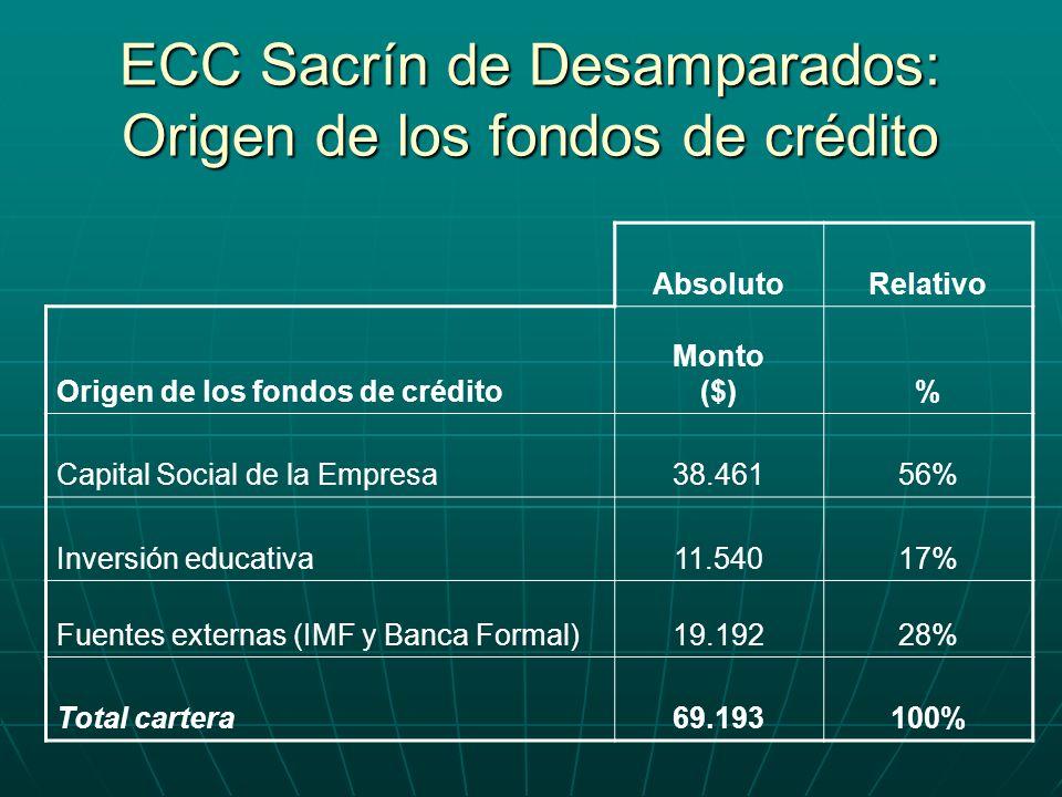 AbsolutoRelativo Origen de los fondos de crédito Monto ($)% Capital Social de la Empresa38.46156% Inversión educativa11.54017% Fuentes externas (IMF y