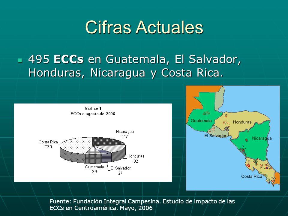 Cifras Actuales 495 ECCs en Guatemala, El Salvador, Honduras, Nicaragua y Costa Rica. 495 ECCs en Guatemala, El Salvador, Honduras, Nicaragua y Costa