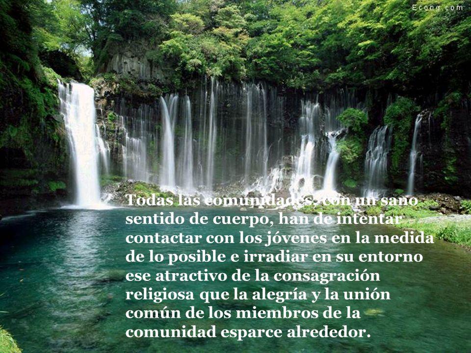 1.9 PASTORAL VOCACIONAL La agregación de nuevos miembros a una Congregación es don de Dios, pero es responsabilidad de todos el tener una sana preocup