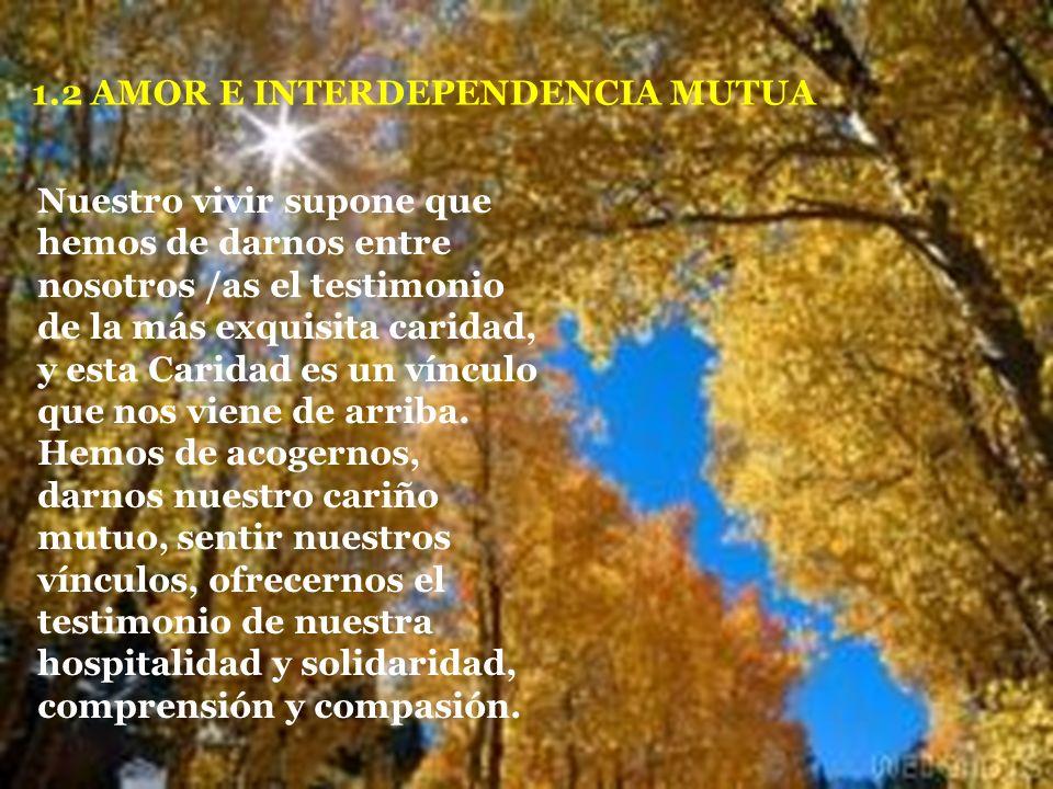 1.- ELEMENTOS DEL SENTIDO DE PERTENENCIA 1.1 CONVOCATORIA Somos convocados /as con otros /as hermanos /as del mismo cuerpo a vivir nuestra vocación qu