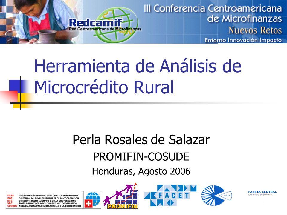 1 Herramienta de Análisis de Microcrédito Rural Perla Rosales de Salazar PROMIFIN-COSUDE Honduras, Agosto 2006