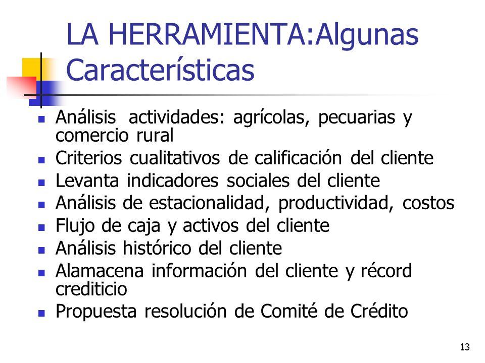 13 LA HERRAMIENTA:Algunas Características Análisis actividades: agrícolas, pecuarias y comercio rural Criterios cualitativos de calificación del clien