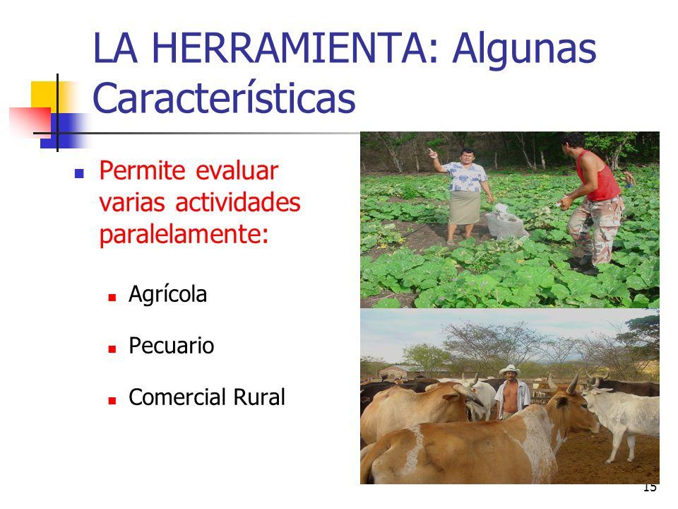 15 LA HERRAMIENTA: Algunas Características Permite evaluar varias actividades paralelamente: Agrícola Pecuario Comercial Rural