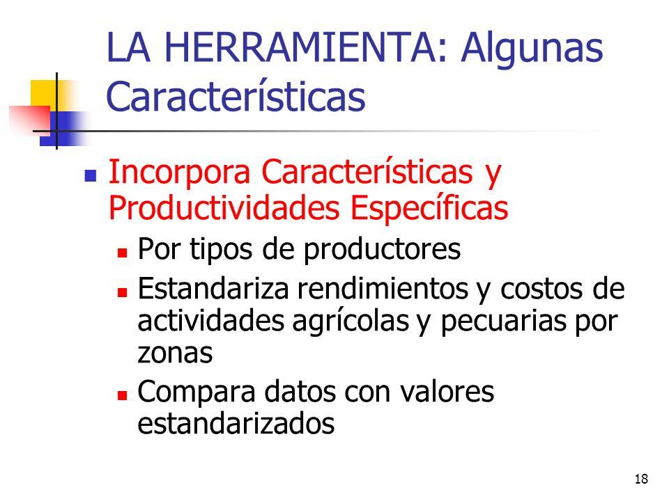18 LA HERRAMIENTA: Algunas Características Incorpora Características y Productividades Específicas Por tipos de productores Estandariza rendimientos y