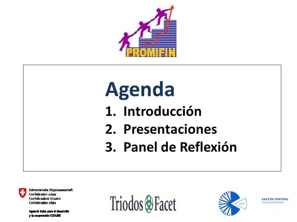 Agenda 1. Introducción 2. Presentaciones 3. Panel de Reflexión