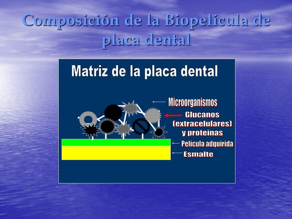 Composición de la Biopelícula de placa dental
