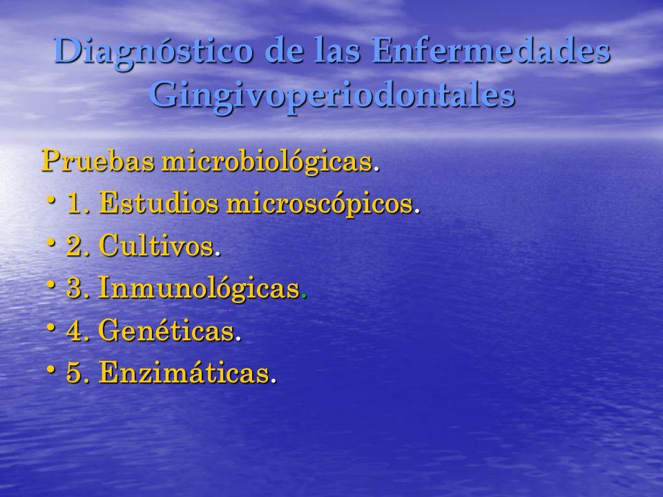 Diagnóstico de las Enfermedades Gingivoperiodontales Pruebas microbiológicas. 1. Estudios microscópicos. 1. Estudios microscópicos. 2. Cultivos. 2. Cu
