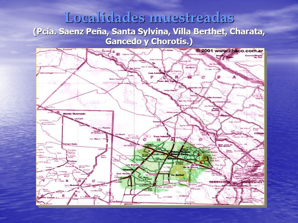 Localidades muestreadas (Pcia. Saenz Peña, Santa Sylvina, Villa Berthet, Charata, Gancedo y Chorotis.)