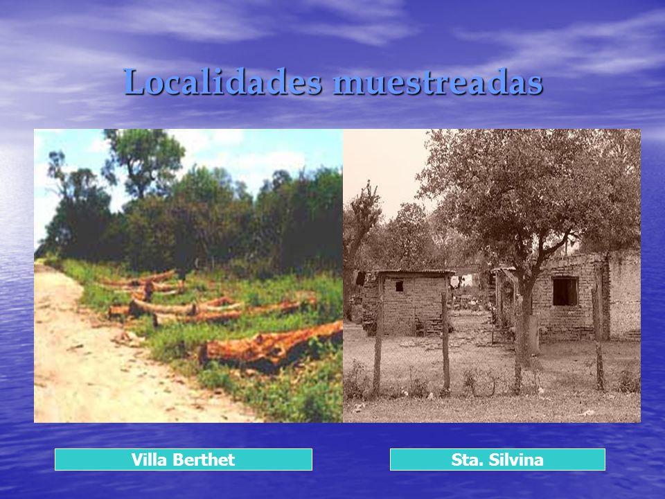 Localidades muestreadas Villa BerthetSta. Silvina