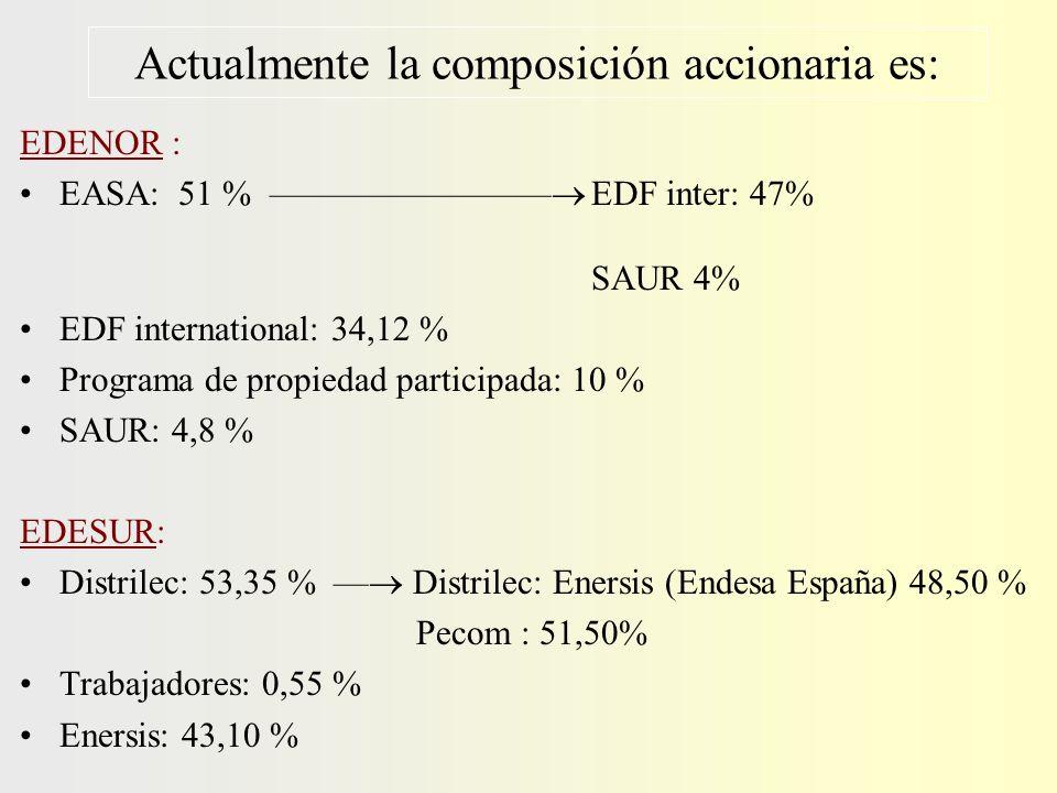 Actualmente la composición accionaria es: EDENOR : EASA: 51 % –––––––––––––––– EDF inter: 47% SAUR 4% EDF international: 34,12 % Programa de propiedad participada: 10 % SAUR: 4,8 % EDESUR: Distrilec: 53,35 % –– Distrilec: Enersis (Endesa España) 48,50 % Pecom : 51,50% Trabajadores: 0,55 % Enersis: 43,10 %