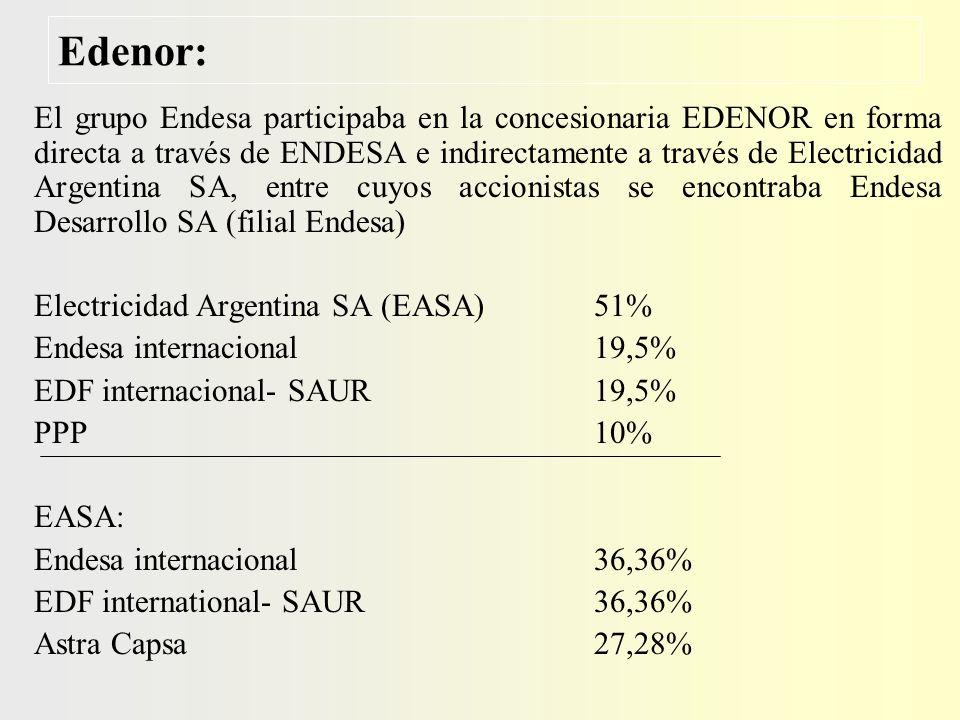 Edesur: El grupo Endesa participaba directamente a través de Enersis International Ltd.