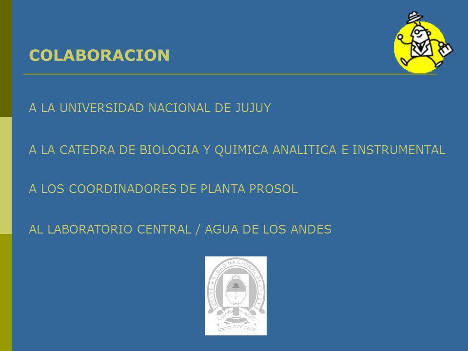 CONSIDERACIONES PRELIMINARES En el 90 % de las muestras analizadas las concentraciones medias de As encontradas están por encima del valor máximo permitido en Argentina.