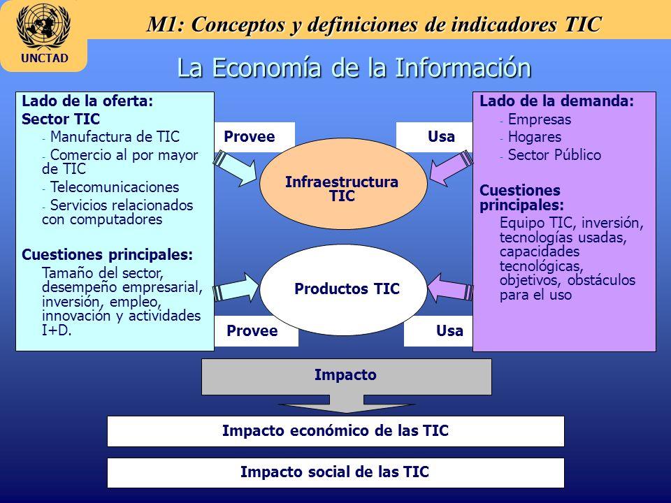 M1: Conceptos y definiciones de indicadores TIC UNCTAD La Economía de la Información Usa Provee Lado de la oferta: Sector TIC - - Manufactura de TIC - - Comercio al por mayor de TIC - - Telecomunicaciones - - Servicios relacionados con computadores Cuestiones principales: Tamaño del sector, desempeño empresarial, inversión, empleo, innovación y actividades I+D.